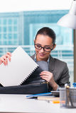 The young businesswoman working in the office. Young businesswoman working in the office Royalty Free Stock Images