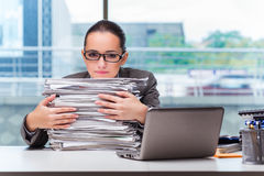 The young businesswoman working in the office. Young businesswoman working in the office Royalty Free Stock Photo