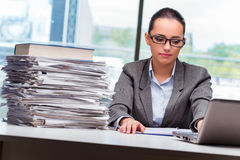 The young businesswoman working in the office. Young businesswoman working in the office Stock Photography
