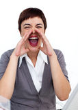 Young businesswoman yelling Royalty Free Stock Images