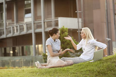 Young businesswomen arguing in office lawn Stock Image