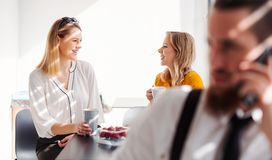 Young businesswomen on coffee break in office kitchen, talking. stock photography