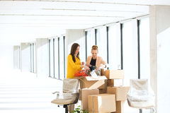 Young businesswomen untangling cords while standing by cardboard boxes in office Royalty Free Stock Images