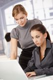 Young businesswomen working in bright office. Young businesswomen working together in bright office, looking at laptop Royalty Free Stock Photography