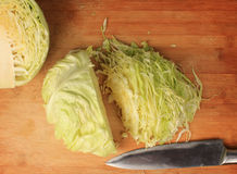 Young cabbage head Stock Images