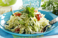 Young cabbage salad Royalty Free Stock Photo
