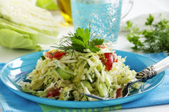 Young cabbage salad with cucumbers Stock Image