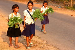 Young Cambodian students. Siem Reap, Cambodia - March 14, 2016: Young Cambodian girls, coming back from school with vegetables Royalty Free Stock Photography