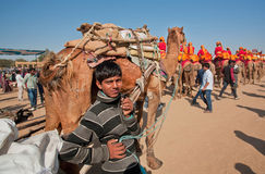 Young cameleer keeps a tight rein on camel Stock Images