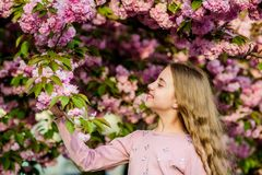Young and carefree. summer. Childhood beauty. skincare. Natural cosmetics for skin. small girl child in spring flower. Bloom. blossom smell, allergy. happy girl royalty free stock image