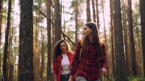 Young careless men and women are hiking in woods on sunny summer day carrying knapsacks, talking and smiling. Travelling