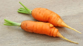 Young carrot Royalty Free Stock Photos