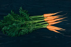 Young carrot. Cooking with fresh vegetables Stock Images