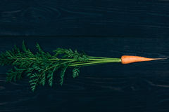 Young carrot. Cooking with fresh vegetables Stock Photos