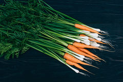 Young Carrot and onion. Cooking with fresh vegetables Stock Images