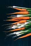 Young Carrot and onion. Cooking with fresh vegetables Royalty Free Stock Photo