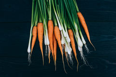 Young Carrot and onion. Cooking with fresh vegetables Stock Photography