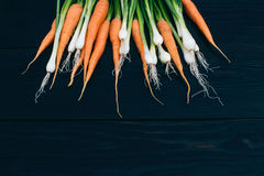 Young Carrot and onion. Cooking with fresh vegetables Royalty Free Stock Photos