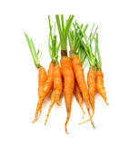 Young carrot on white background. fresh fruit and vegetables are. Always healthy stock photos