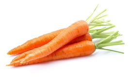 Young carrots in closeup Royalty Free Stock Photography