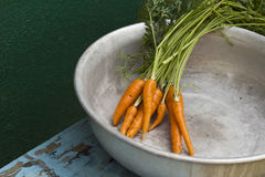 Young carrots with leaves in metallic bowl Stock Photo