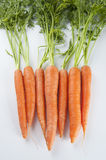 Young carrots with tops of vegetable on a light background. Stock Photo