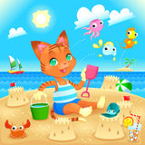 Young cat makes castles on the beach. Stock Images