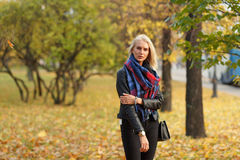 Young caucasian blond woman in colourful forest in autumn day royalty free stock photos