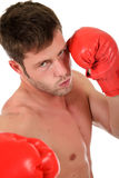 Young caucasian boxer, tough. Stock Image
