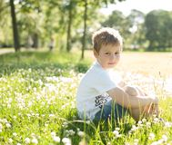 A young caucasian boy sitting in a summer meadow lit by back light stock photography