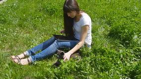 Young caucasian brunette girl sitting on grass on the meadow in the park, stroking a cat and using digital tablet pc. stock video footage