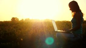 Young caucasian brunette woman typing on a laptop outdoors at beautiful sunset sitting on the grass with amazing lense. Young woman typing on a laptop outdoors stock video