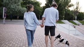 Young caucasian couple are walking in the city park hand in hand with dog. Wearing blue shirts. Boy is playing with. Their dog while they walking. Rare view stock footage