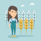Young caucasian farmer standing in a wheat field. Stock Photos