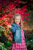 Young Caucasian Girl royalty free stock images