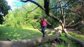 Girl walking on a tree trunk. Young Caucasian girl walking on a large tree trunk in a forest stock footage