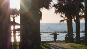 Young caucasian girl walking on promenade surrounded by palms. Attractive woman in casual wear walking along beach. Girl walking t. Hrough hotel area stock footage