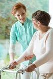 Nurse helping elder with walker. Young caucasian nurse in apron helping elder women with walker Stock Images
