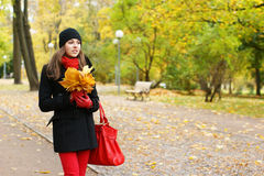 A young Caucasian woman on an Autumn background Stock Photography