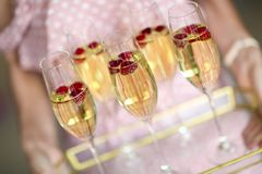 Young woman with champagne glasses on tray. Young caucasian woman with champagne glasses on tray royalty free stock photos