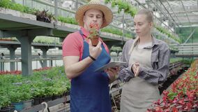 Young Caucasian woman coming to professional male biologist in greenhouse holding red flower in pot. Busy mid-adult man
