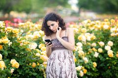 Young Caucasian woman with dark curly hair near yellow rose bush in a rose garden looking to her black smartphone, reading emails,. Checking messages royalty free stock image