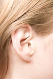 Young caucasian woman ear closeup Stock Photos