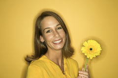 Young Caucasian woman holding flower. Portrait of smiling young adult Caucasian woman on yellow background holding flower Royalty Free Stock Photo