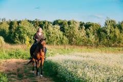 Young Caucasian Woman Riding Horse Along Summer Blooming Meadow Stock Photos
