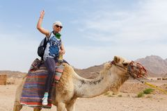 Young caucasian woman tourist riding on camel Stock Image