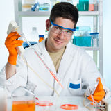 Young cell biologist working Royalty Free Stock Photography