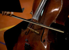 Young cello player Royalty Free Stock Images