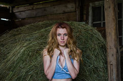 Young charming blonde girl with long hair in a barn on a farm near a haystack in the countryside with alluring eyes is wearing a d Royalty Free Stock Photo