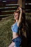 Young charming blonde girl with long hair in a barn on a farm near a haystack in the countryside with alluring eyes is wearing a d Stock Photo